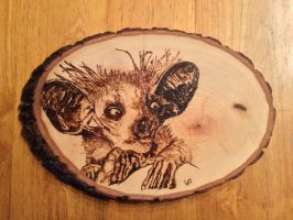 AyeAye Pyrography by H20dog