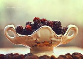 blackberries by Cochalita