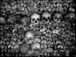 wall of skulls and bones by R3ds0Ld13r