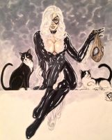 Black Cat Commission by spilkerart