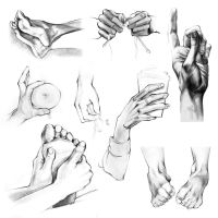Hands and Feet by brehuang