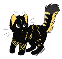Thunder/Lightning Kitten- Cheap by kitkatkttyAdopts5000
