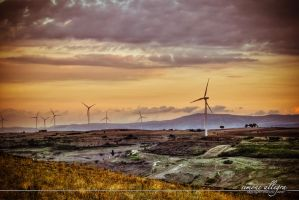 wind turbines by zakkarya