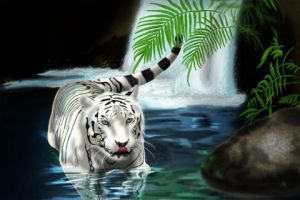 white tiger by Glaudur