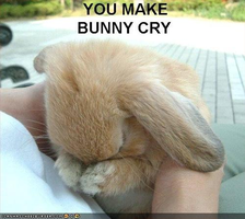 You make bunny cry by theonlycheesecake
