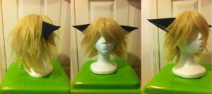Schrodinger Wig and Ears by Roxxi980