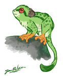 Tamarin Frog - Real Life by Paper-Star-Zombie