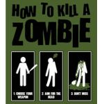 How To Kill a Zombie Icon! by awsomehetalia456