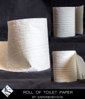 Roll of Toilet Paper (Stock) by KarvinenStock