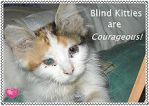 Blind Kitties are Courageous-Stamp by SerenaAndMina