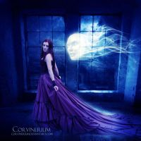 Presence by Corvinerium