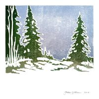 Snow and Evergreens by jackieocean
