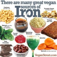 Vegan Sources Of Nutrients 004 by veganshareStock