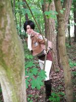 SnK- Stealth by lilotea-chan
