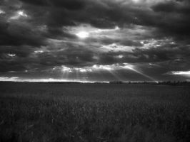InfraRed Photo 7 by simre