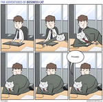 The Adventures of Business Cat - Keyboard by tomfonder