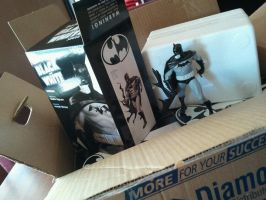 free Batman BW Statue Signed by duss005
