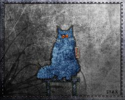 Jeans cat wallpaper. by StaX-ten7