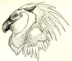 Gryphead by caramitten