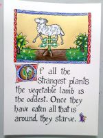 Vegetable Lamb Bestiary Page by hollyann