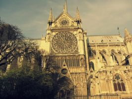 Notre Dame in Fall #2 by Gaabs
