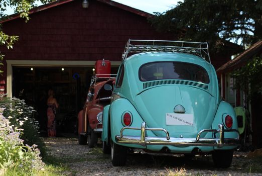 Bugged Driveway by KyleAndTheClassics