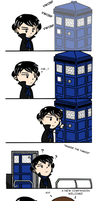 Wholock: Travelling by AnimeTimelord