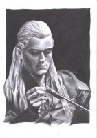 Legolas worried by Tindarien