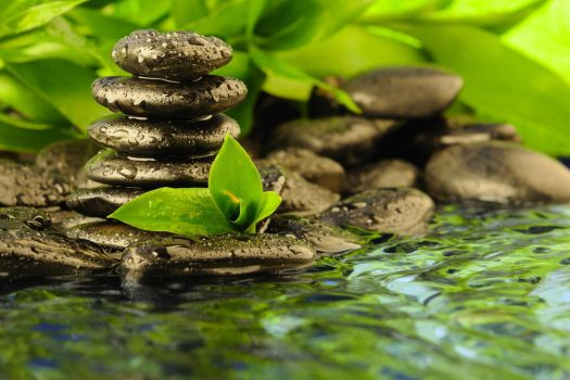 Stones on the Water by WallpaperEarth