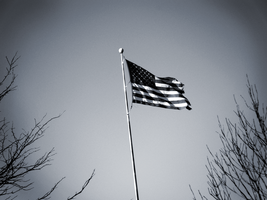 Old Glory by Due-South
