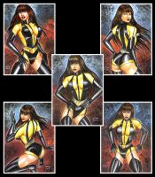 SiLK SPECTRE PERSONAL SKETCH CARDS by AHochrein2010