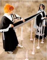 Bankai Byakuya vs. Ichigo by AthelLoren-wardancer