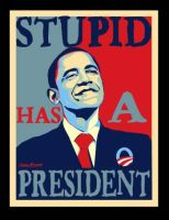 Stupid Obama Poster by Conservatoons
