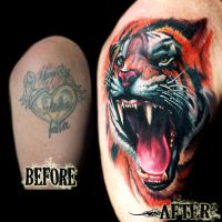 Tiger Coverup by DanielPokorny