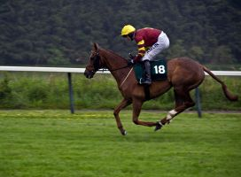 The Gold Cup at Perth by DundeePhotographics