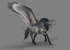 Pegasus by DawnFrost
