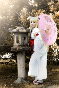 Oinari-sama by Okami-kiss