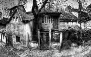 Treehouse feat house on top bw by c1p0