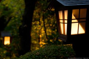 Lantern Path by AlchemyAllStars