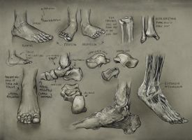 Foot1 by mattdonnici