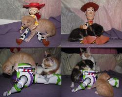 Toy Story Kittens by Dragon-Star-Empress