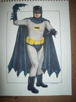 Batman Cosplay Commission by TessFowler