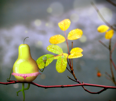 Lonely pear on the tree by oxanaart