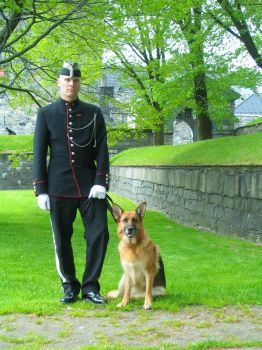 An officer and his dog 2 by Blodsravn