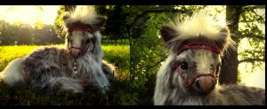 SOLD  HAND MADE Poseable Baby Shetland Pony! by Wood-Splitter-Lee