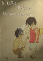 Ace and Luffy by Dreamcatcher-gr