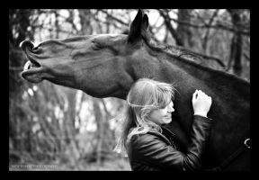 You and I by NewForestPhotography