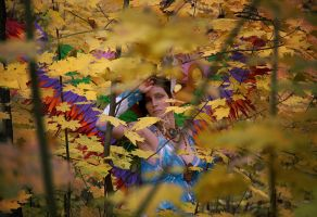Foliage by Katerinich