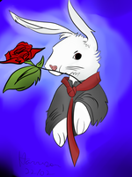 Rabbit_Request17 by LucasH-EquipeNaxus