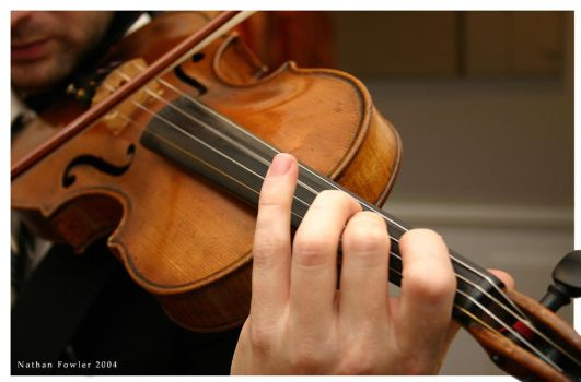 The Violin by Vouler